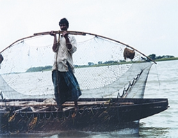 Fisheries - Banglapedia